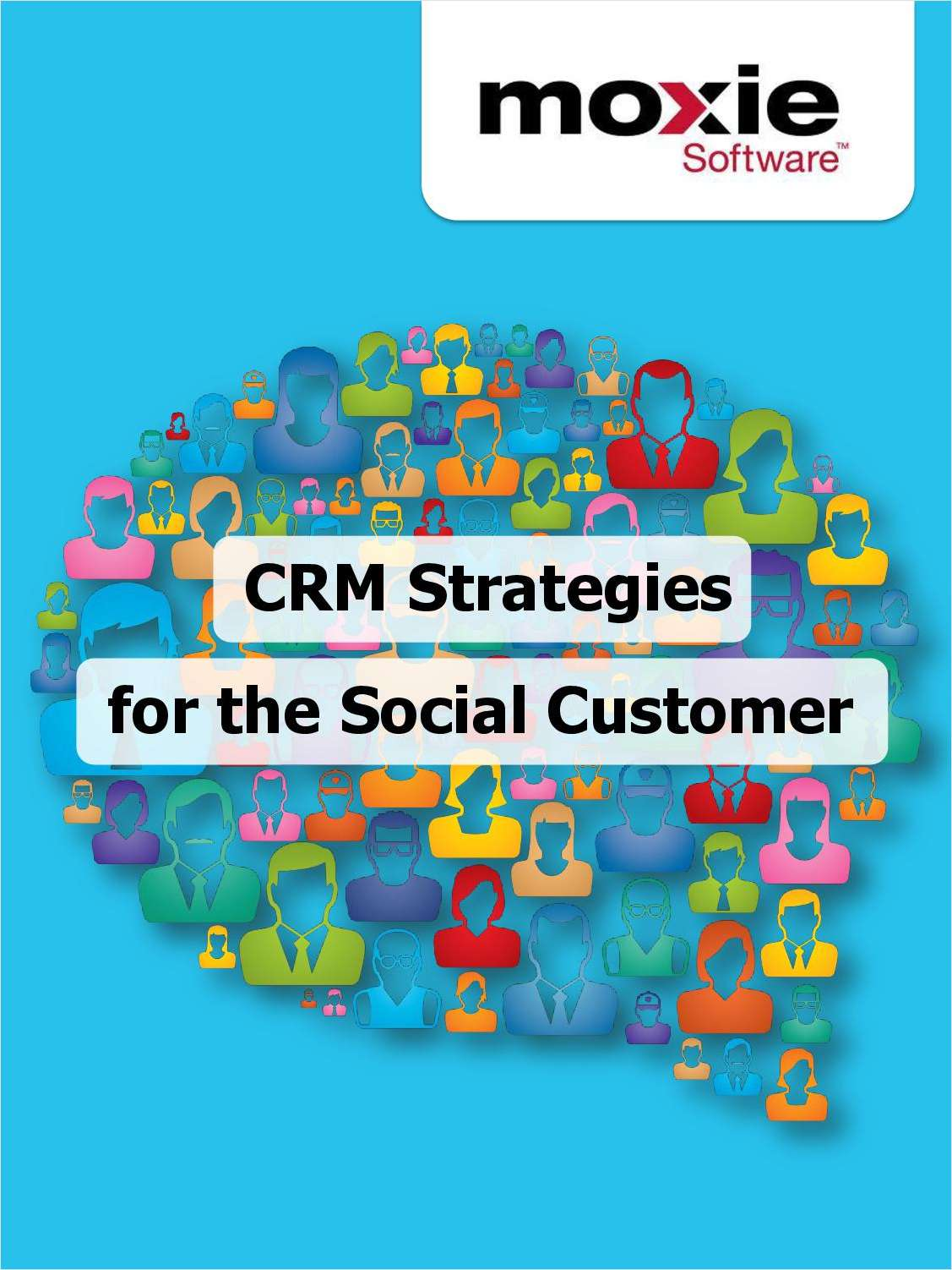 CRM Strategies for the Social Customer