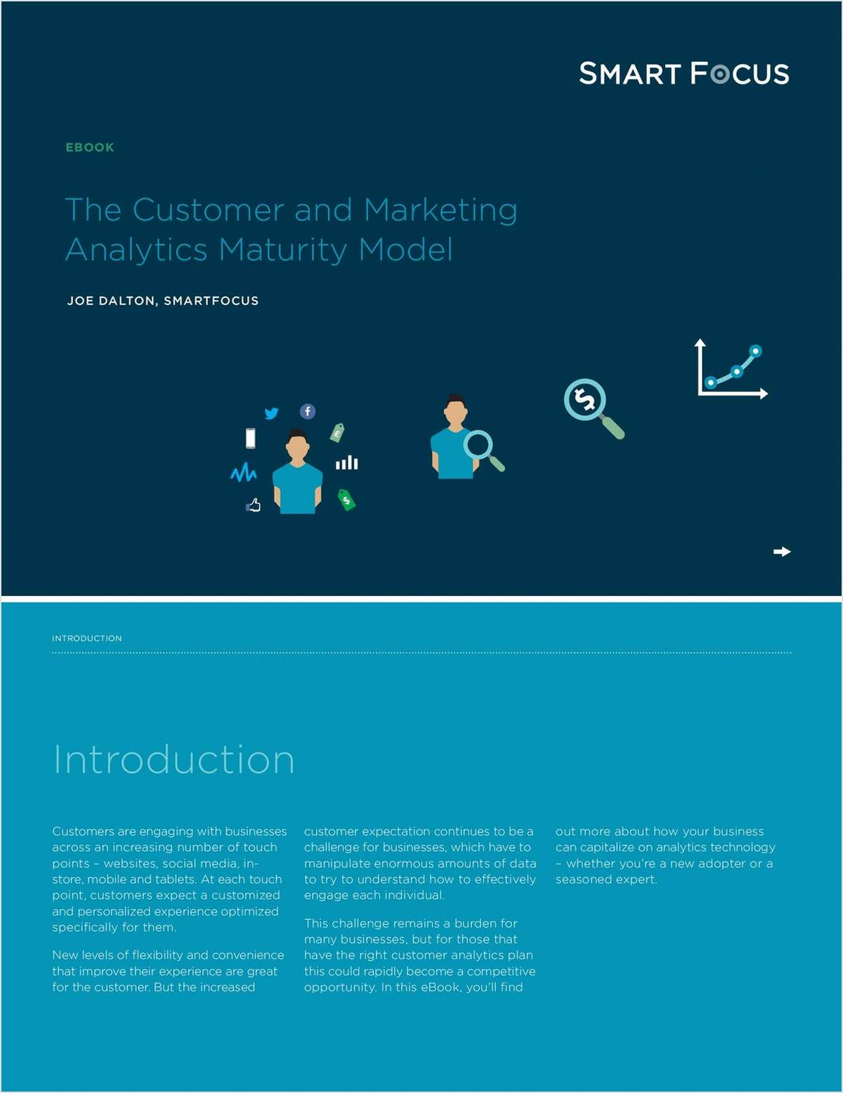 The Customer and Marketing Analytics Maturity Model
