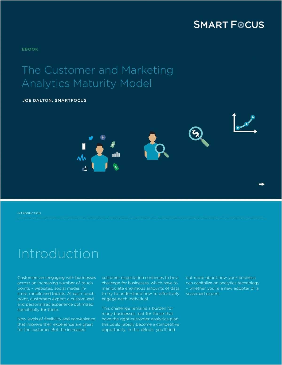 The Customer and Marketing Analytics Maturity Model
