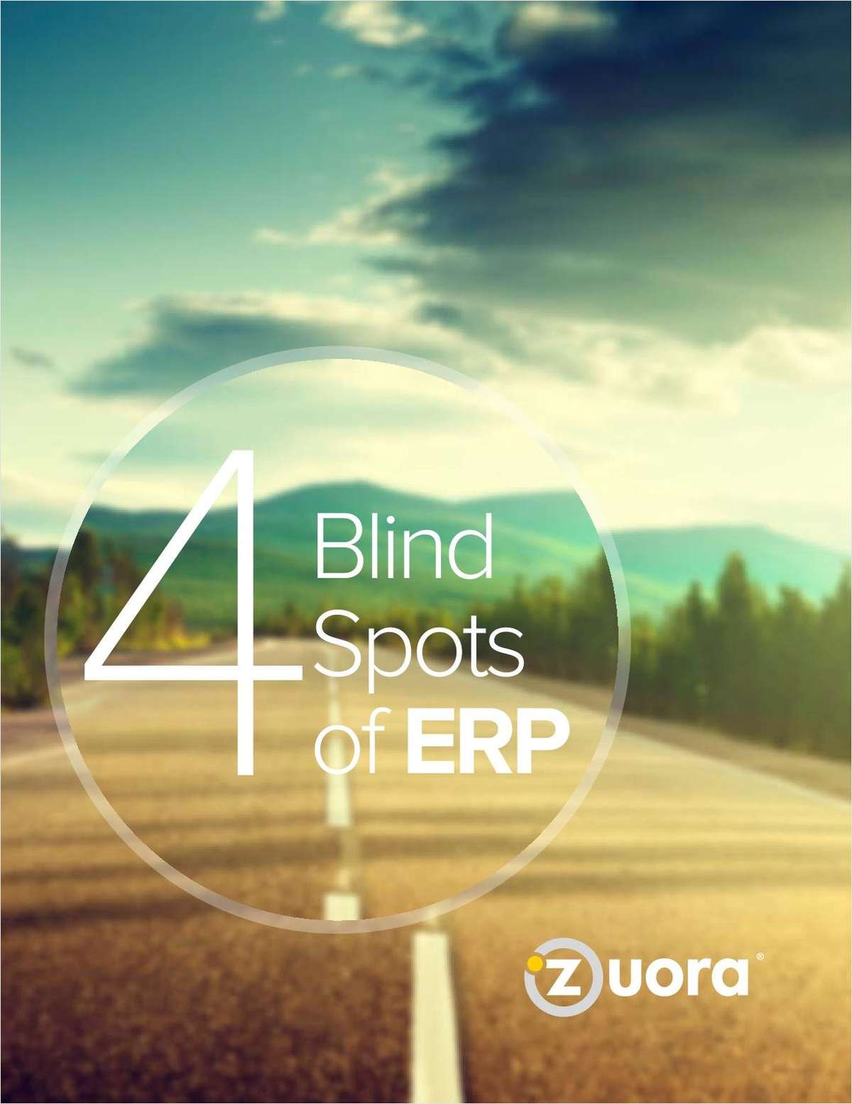 The 4 Blind Spots of ERP