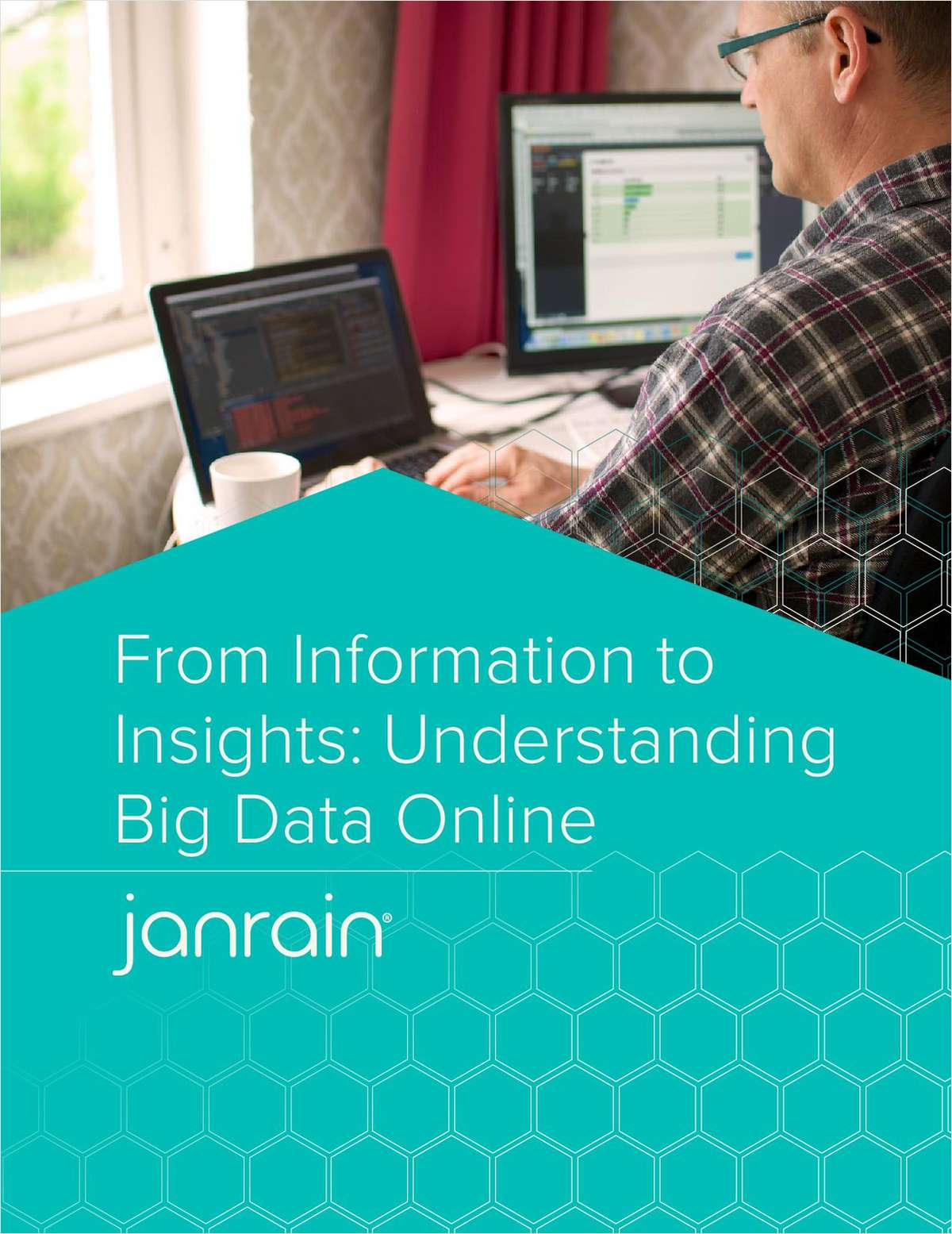From Information to Insights: Understanding Big Data Online
