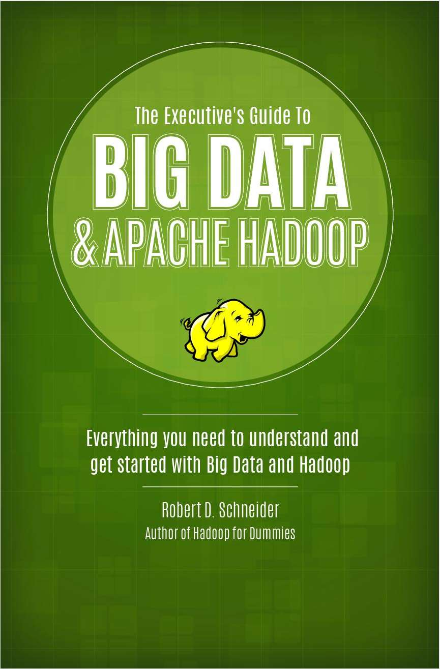 IT Executive's Guide to Big Data and Hadoop