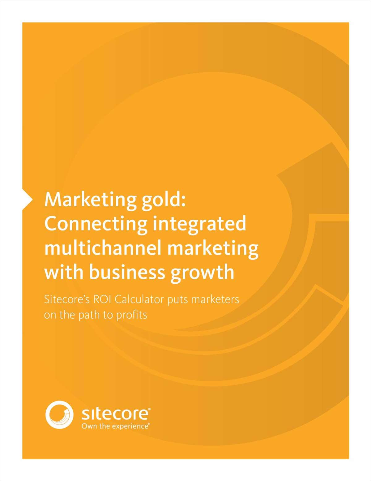 Marketing Gold: Connecting Integrated Multichannel Marketing with Business Growth