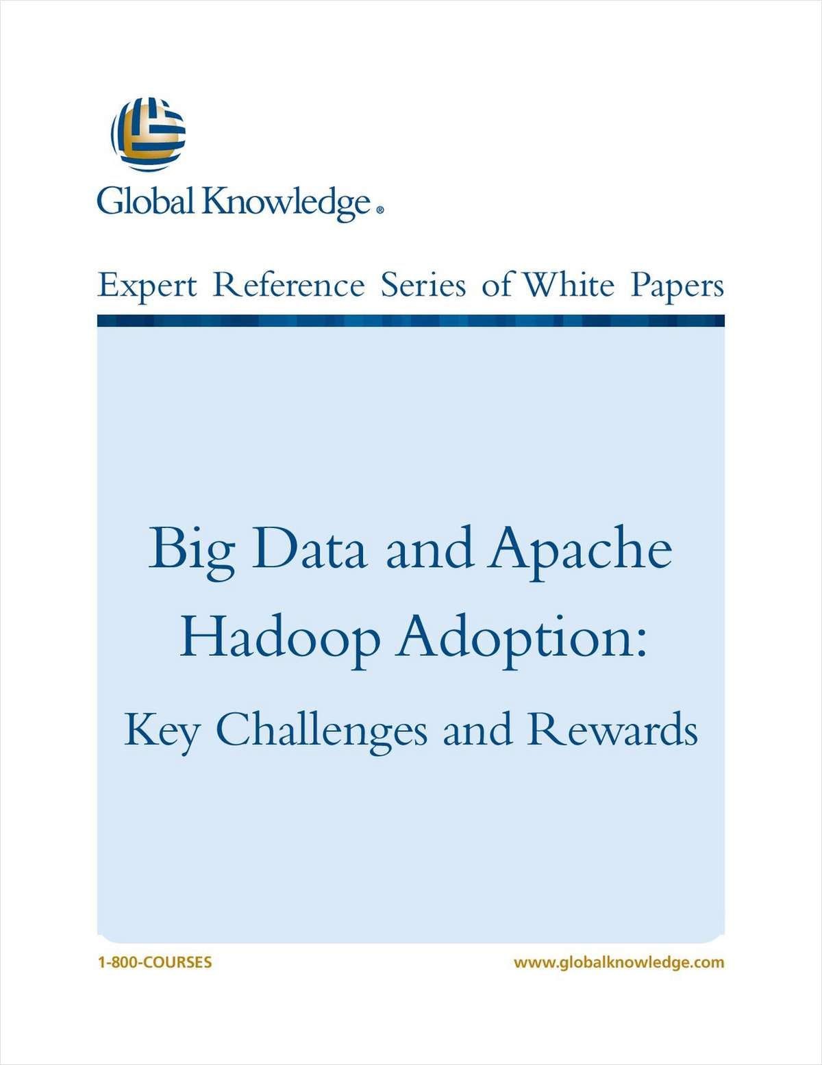 Big Data and Apache Hadoop Adoption: Key Challenges and Rewards