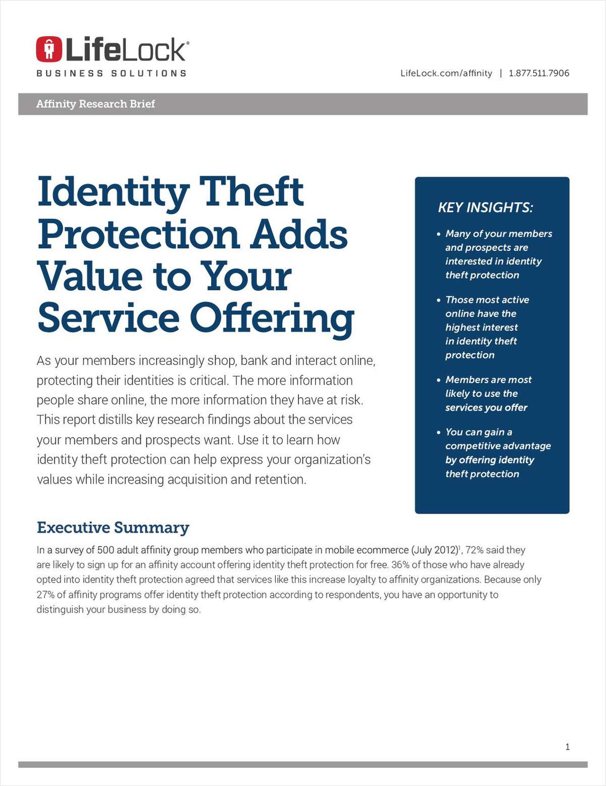 Adding Value Research Brief for Affinity Organizations