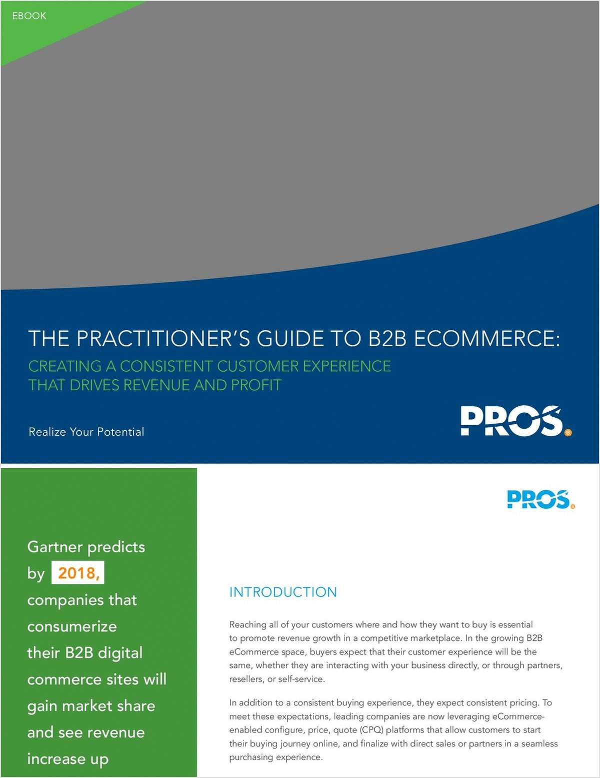 The Practitioner's Guide to B2B eCommerce