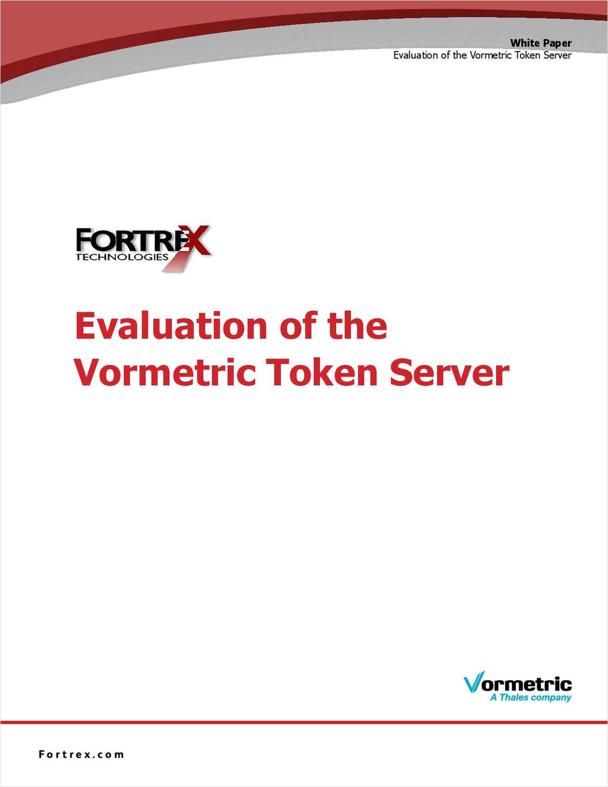 Evaluation of the Vormetric Token Server