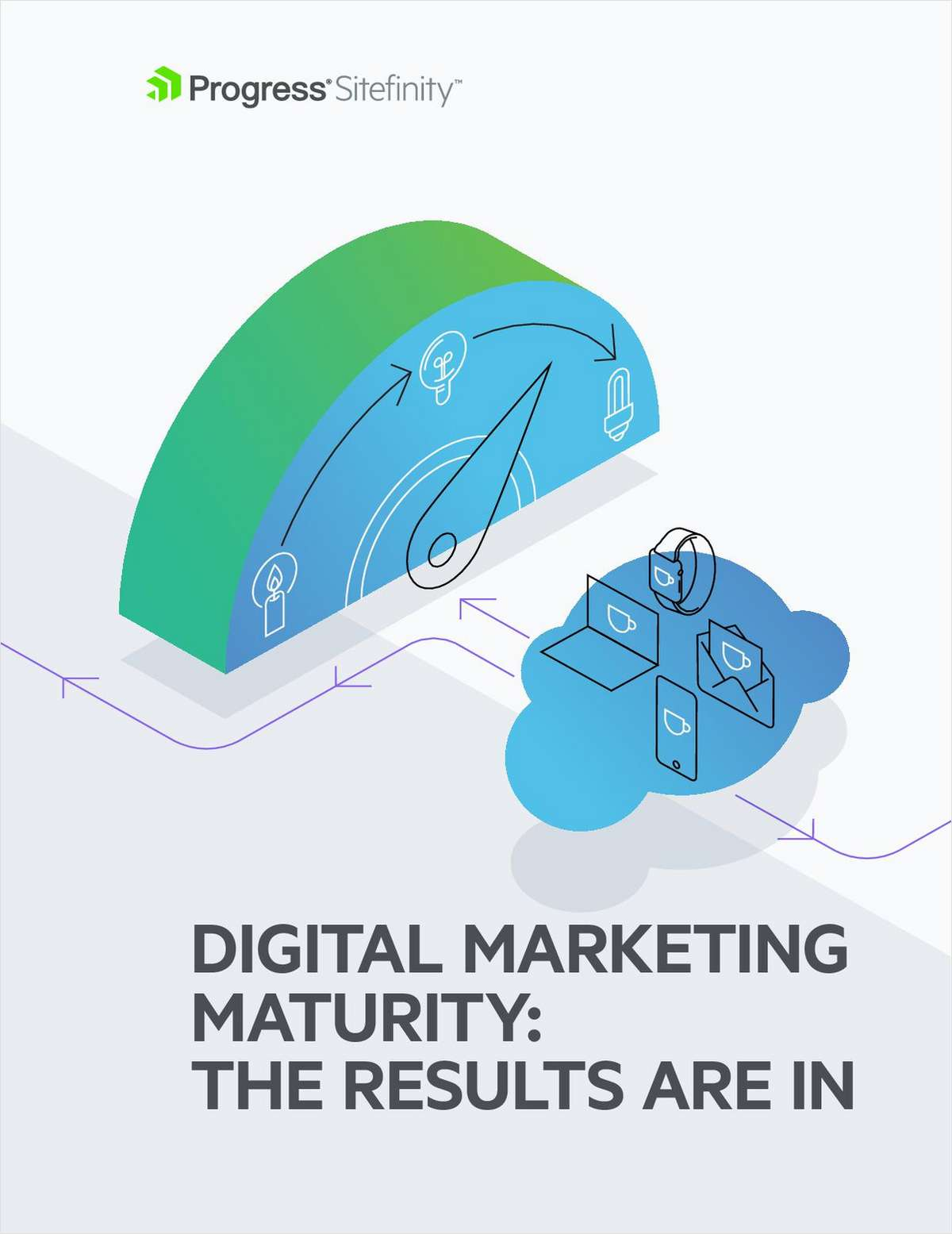 Digital Marketing Maturity: The Results are In