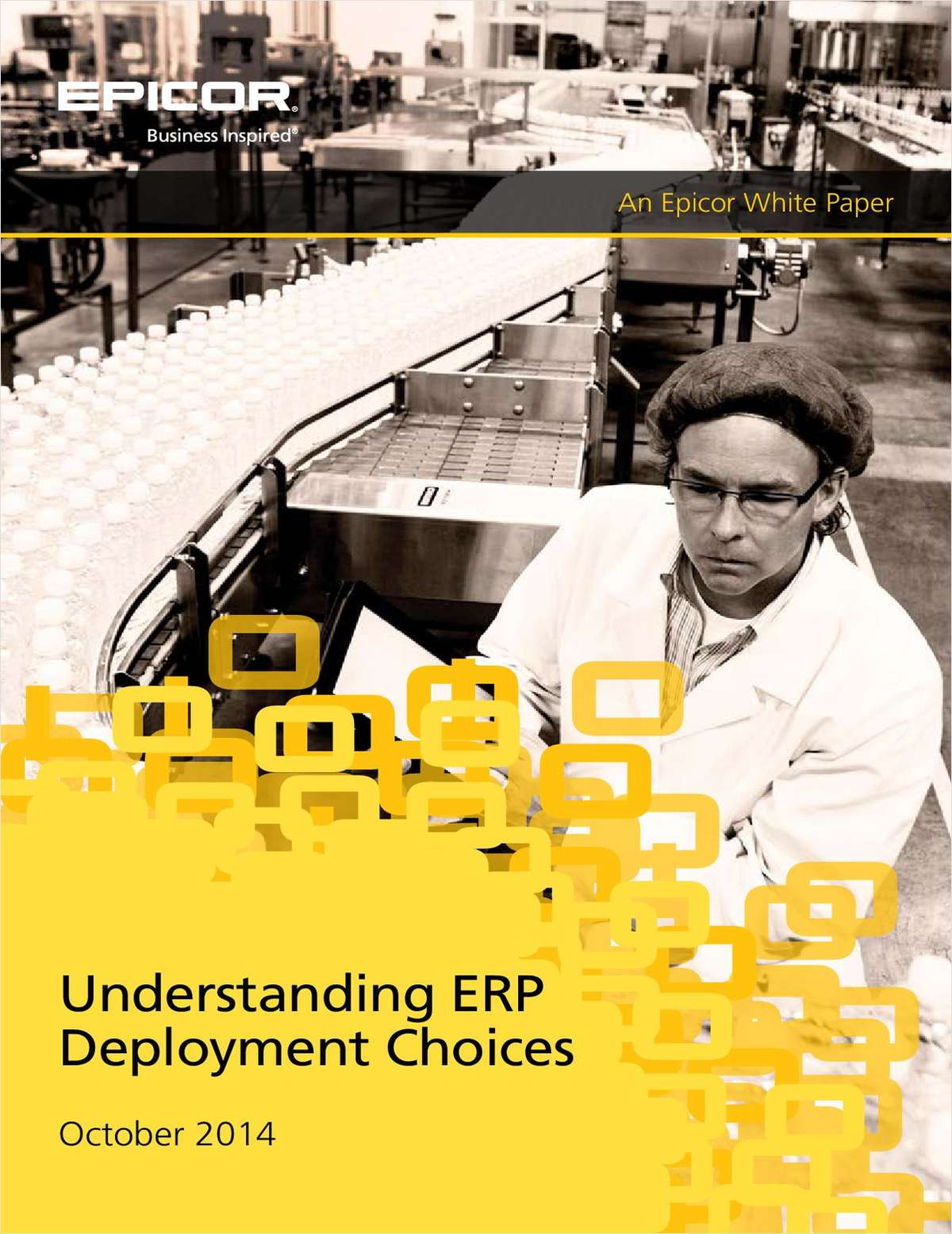 Comprehending ERP Deployment Choices