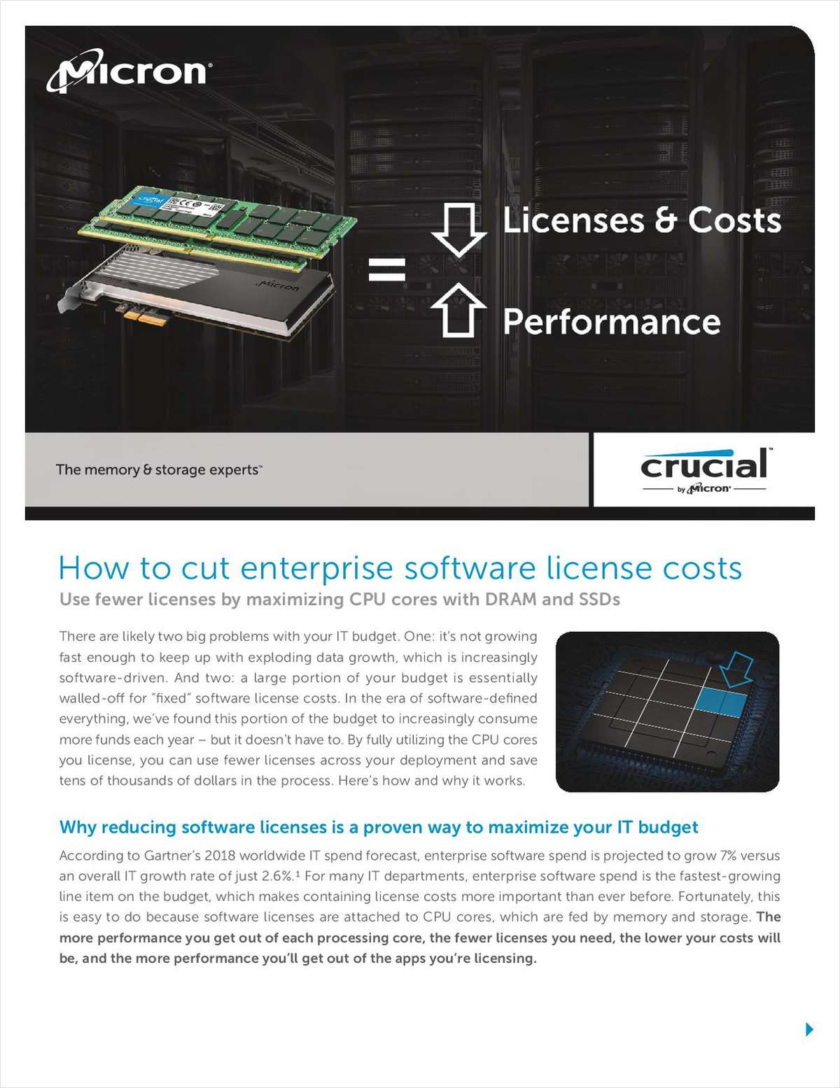 How to Cut Enterprise Software License Costs