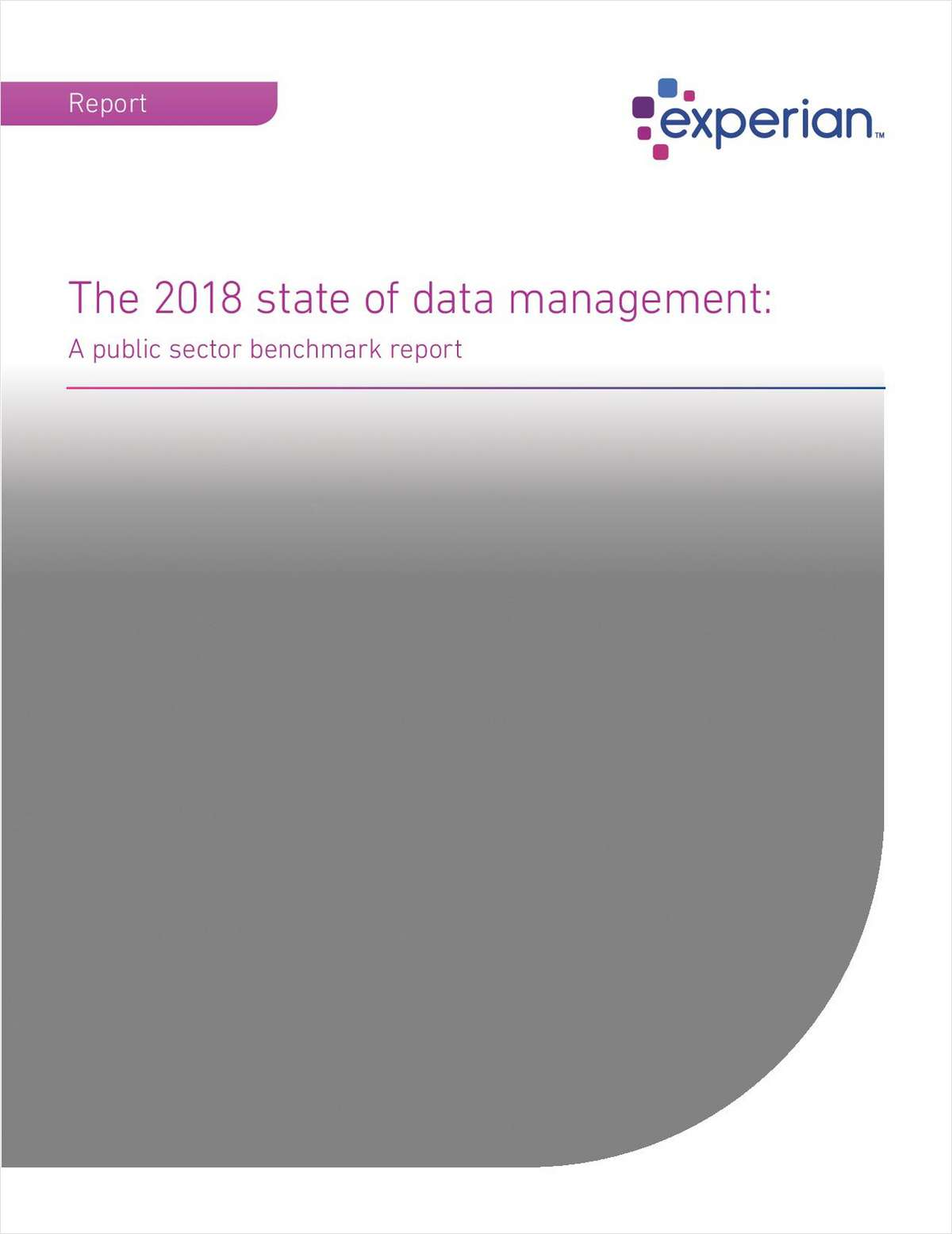The 2018 state of data management: A public sector benchmark report