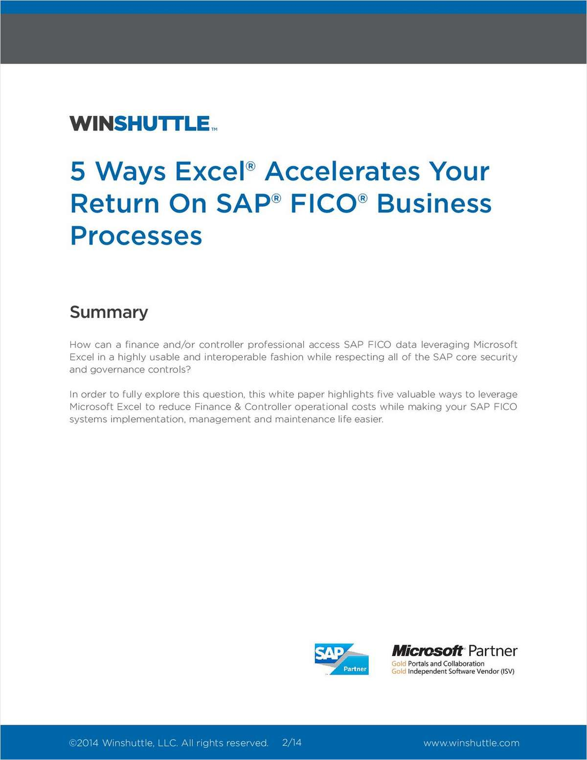 5 Ways Excel Accelerates Your Return on SAP FICO Business Processes