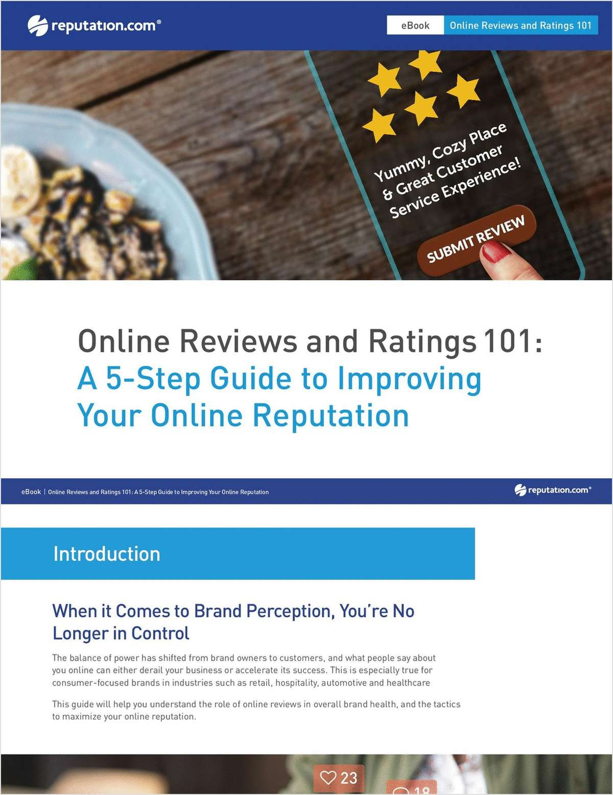 Online Reviews and Ratings 101