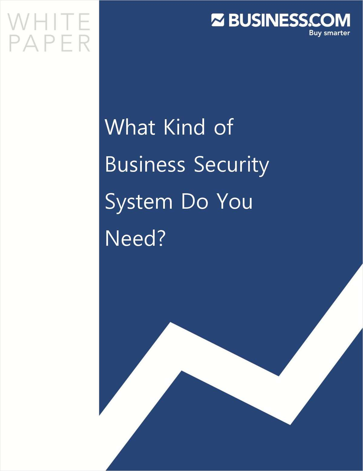 What Kind of Business Security System Do You Need?