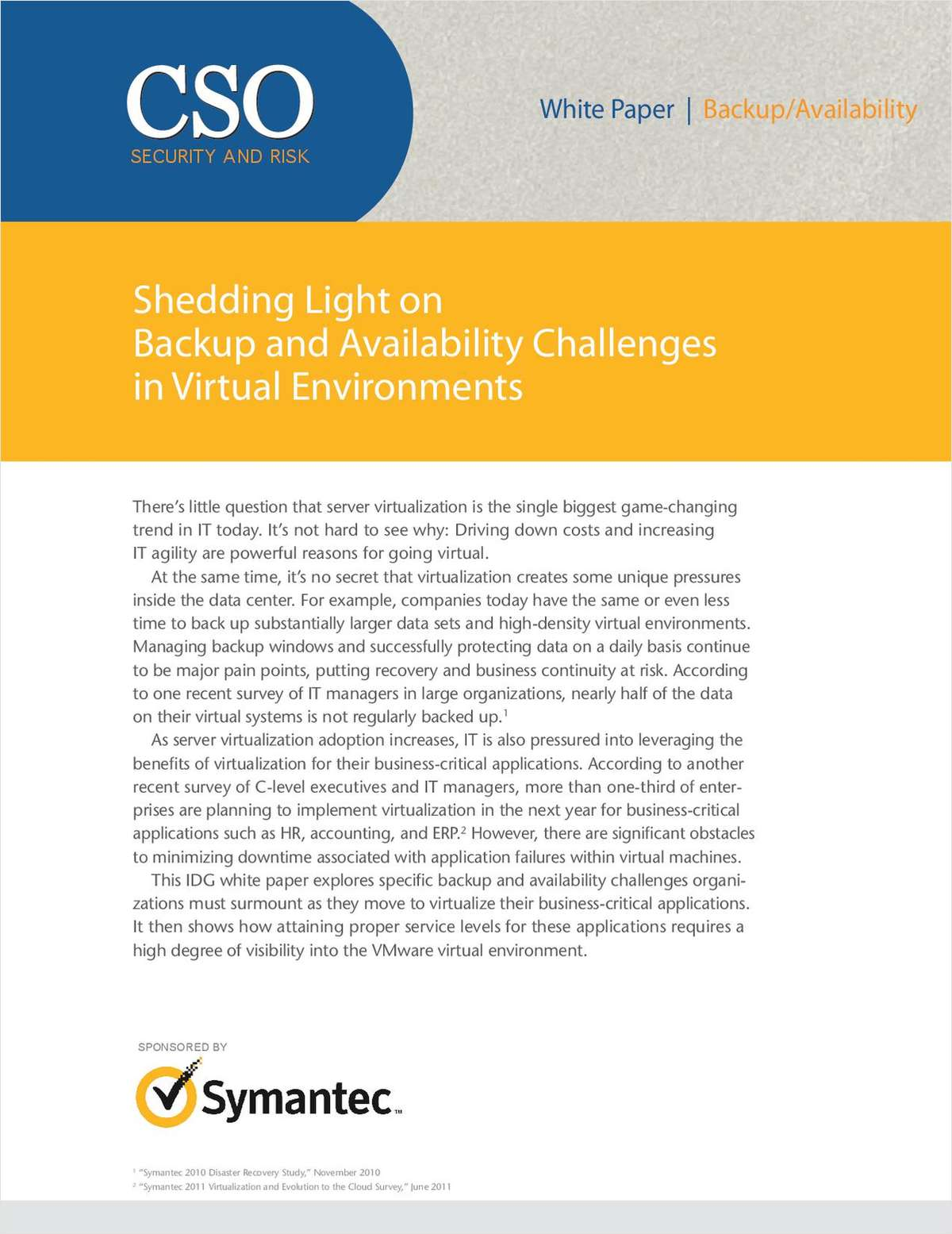 Shedding Light on Backup and Availability Challenges in Virtual Environments