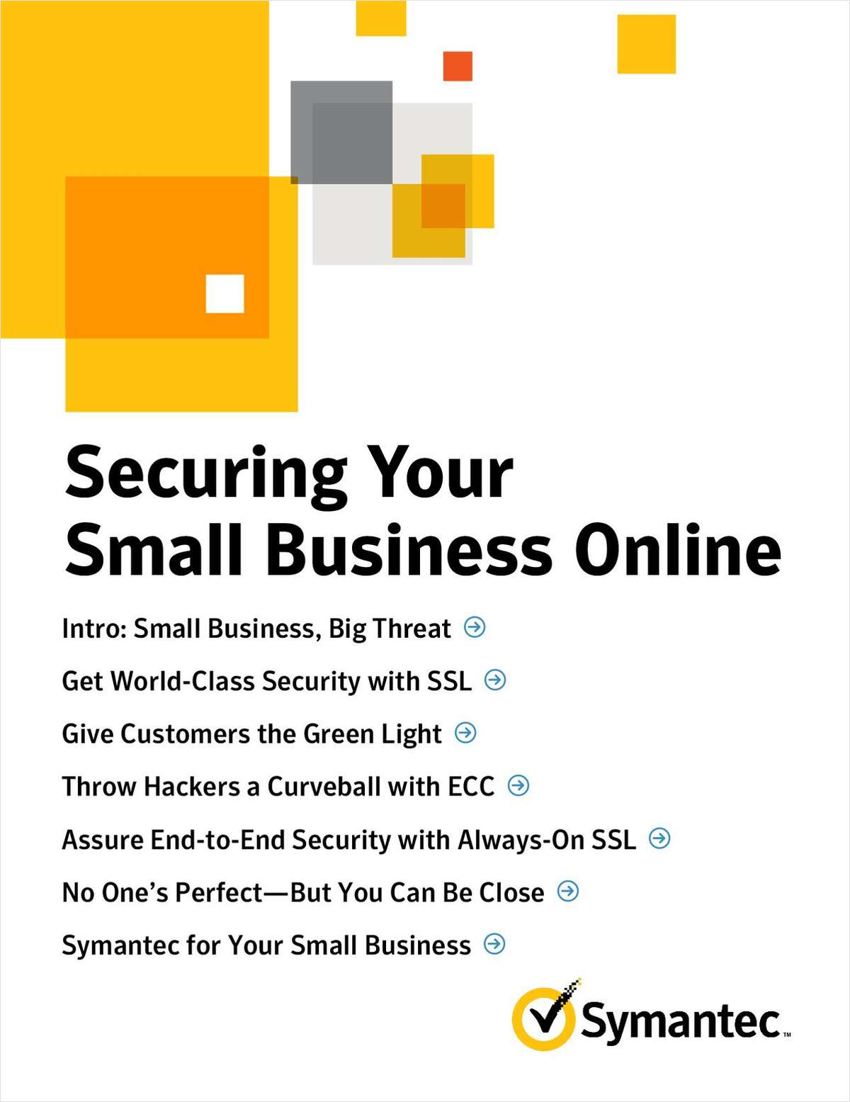 Securing You Small Business Online