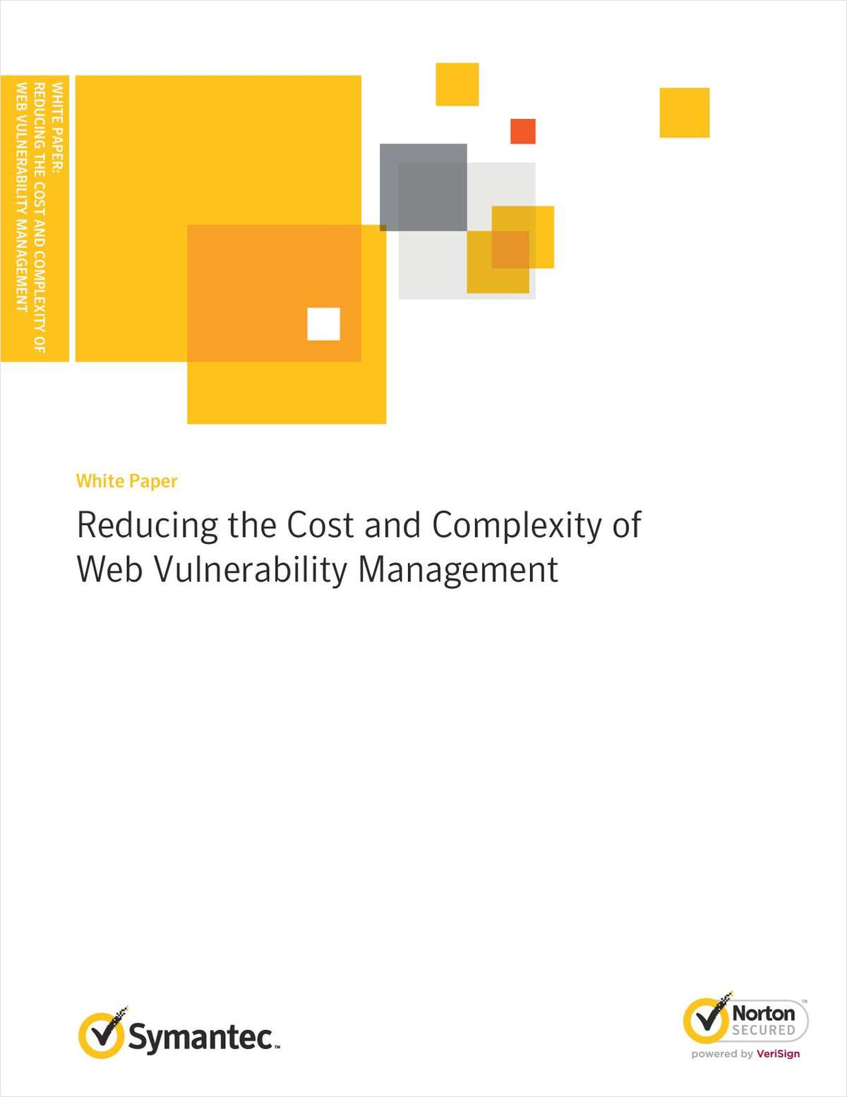 Reducing the Cost and Complexity of Web Vulnerability Management