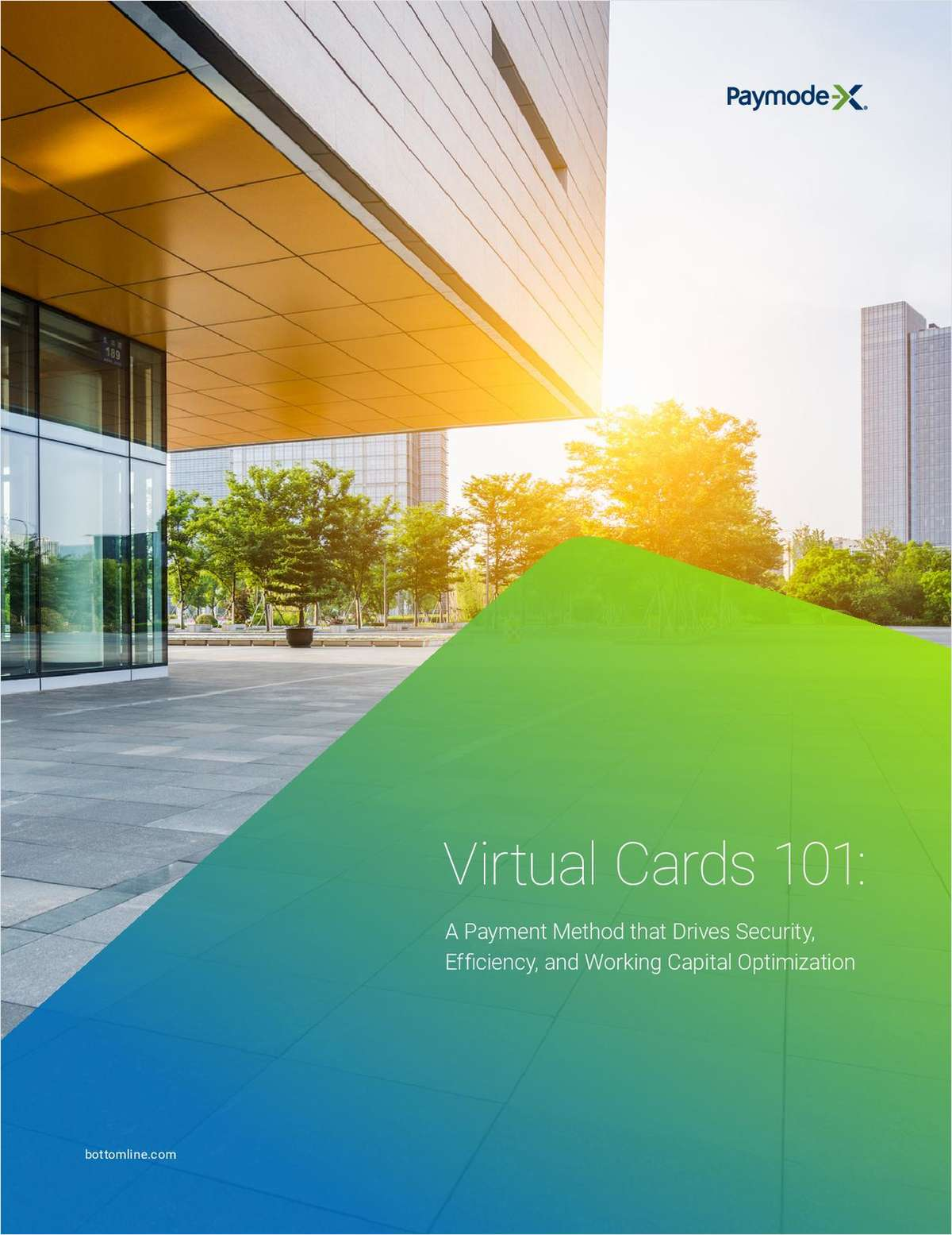 Virtual Cards 101