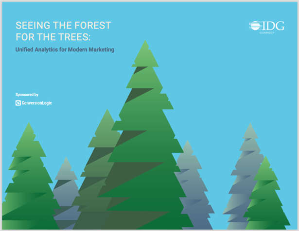 Seeing the Forest for the Trees: Unified Analytics for Modern Marketing