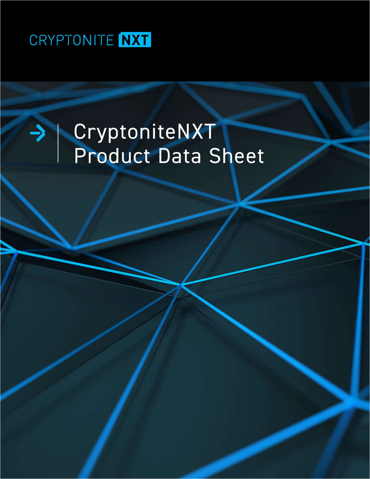 CryptoniteNXT Data Sheet