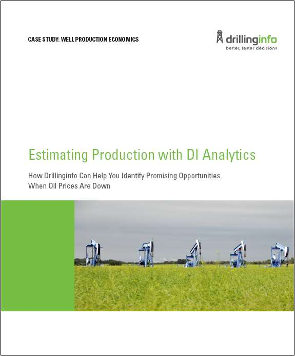 Case Study: Well Production Economics