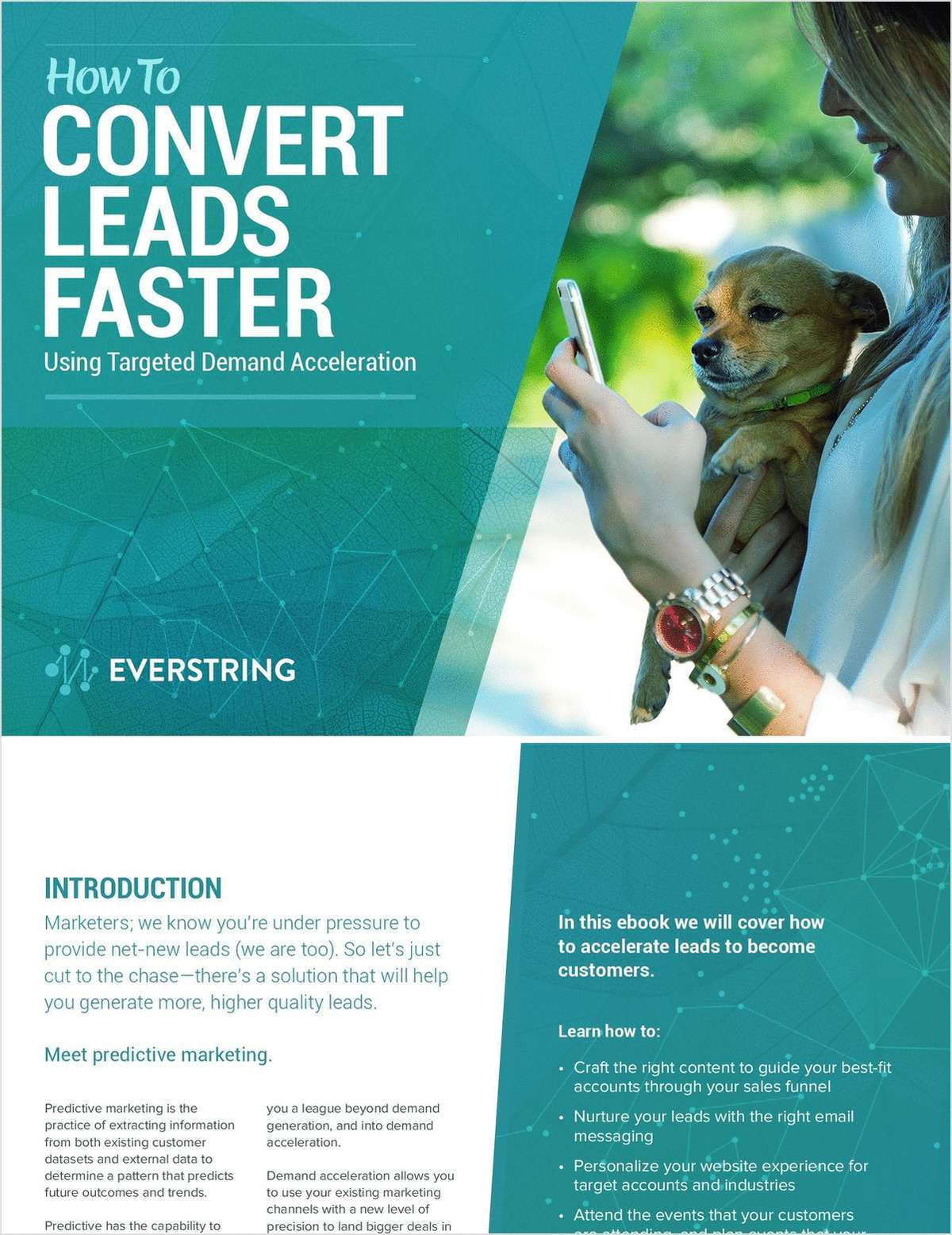 How to Convert Leads Faster Using Targeted Demand Acceleration