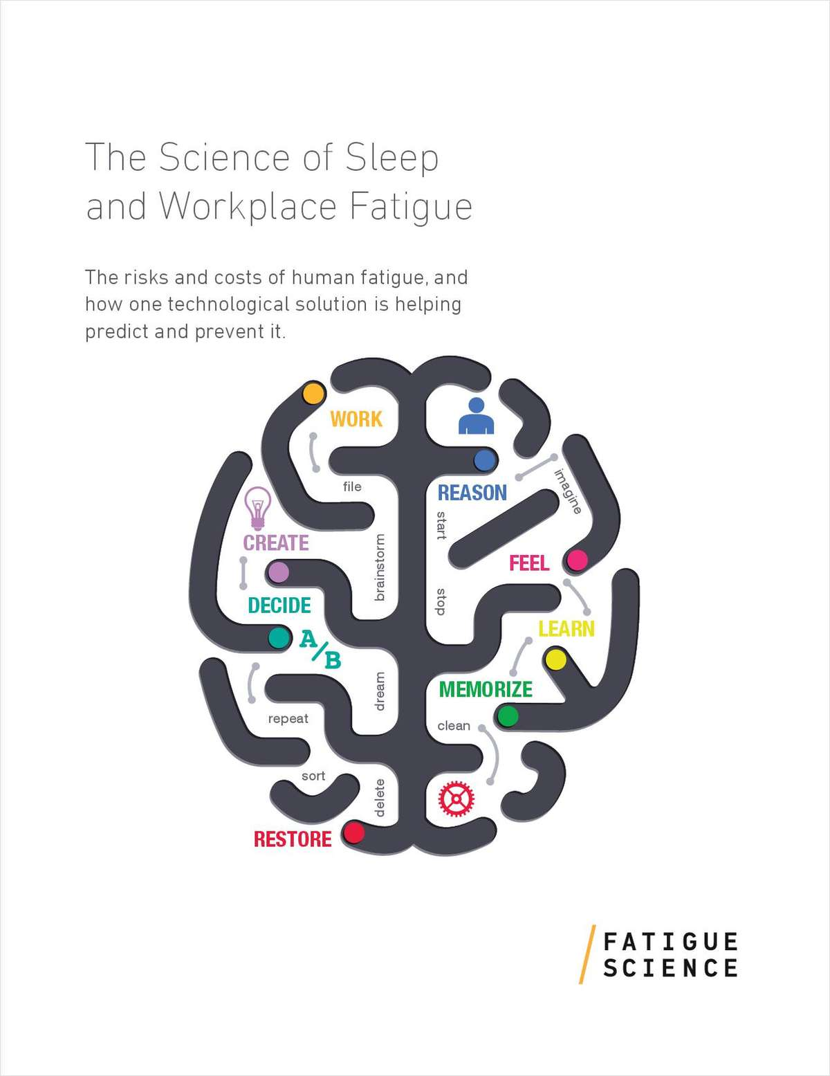 The Science of Sleep and Workplace Fatigue