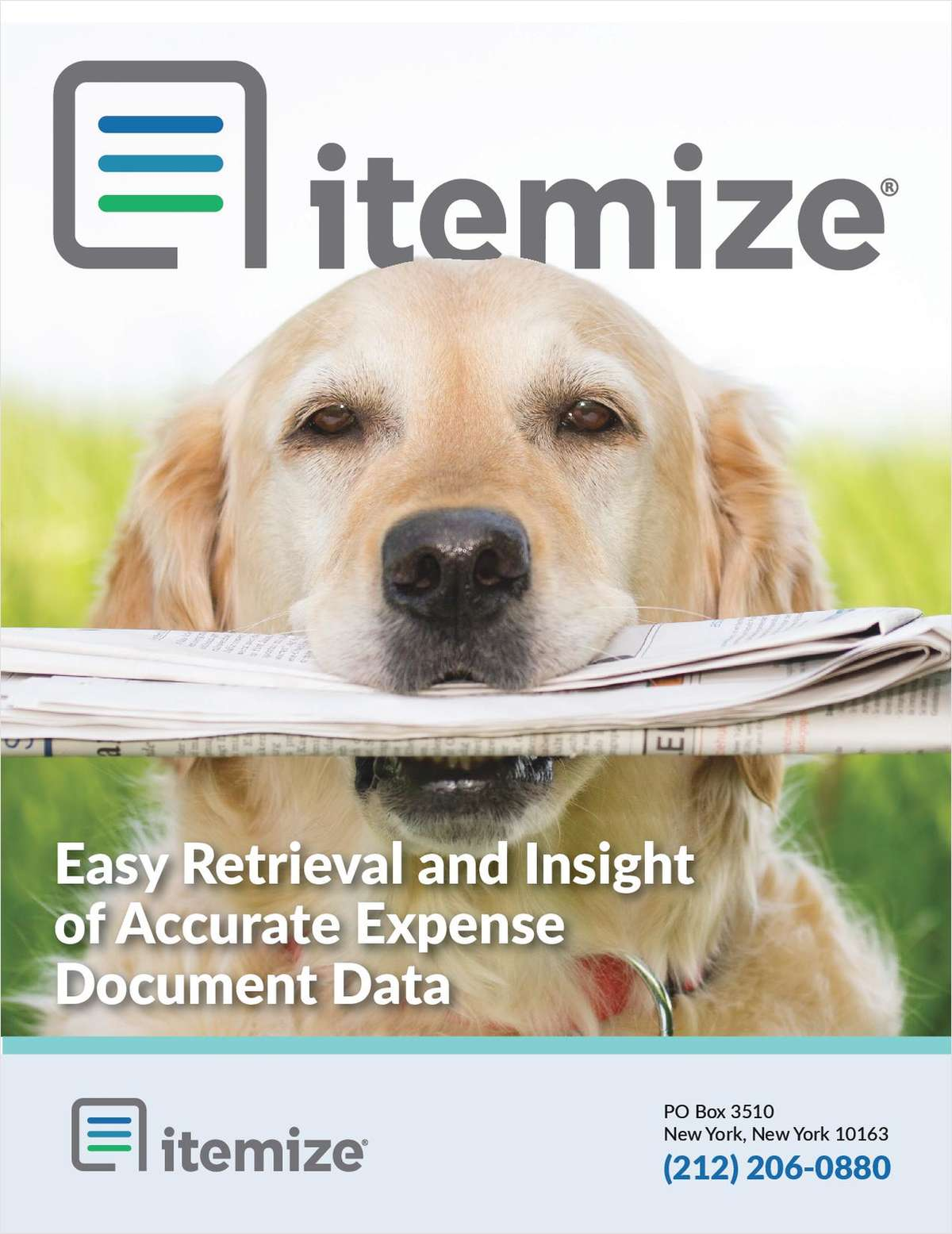Easy Retrieval and Insights from Expense Documents