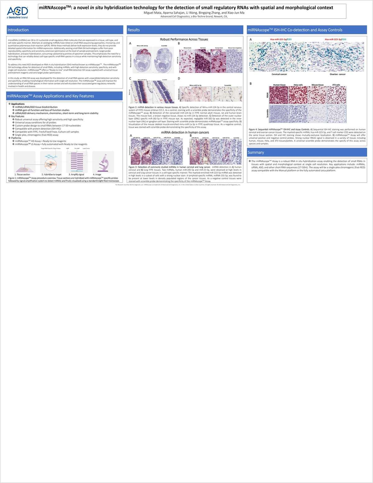 miRNAscope: A Novel In Situ Hybridization Technology for the Detection of Small Regulatory RNAs with Spatial and Morphological Context