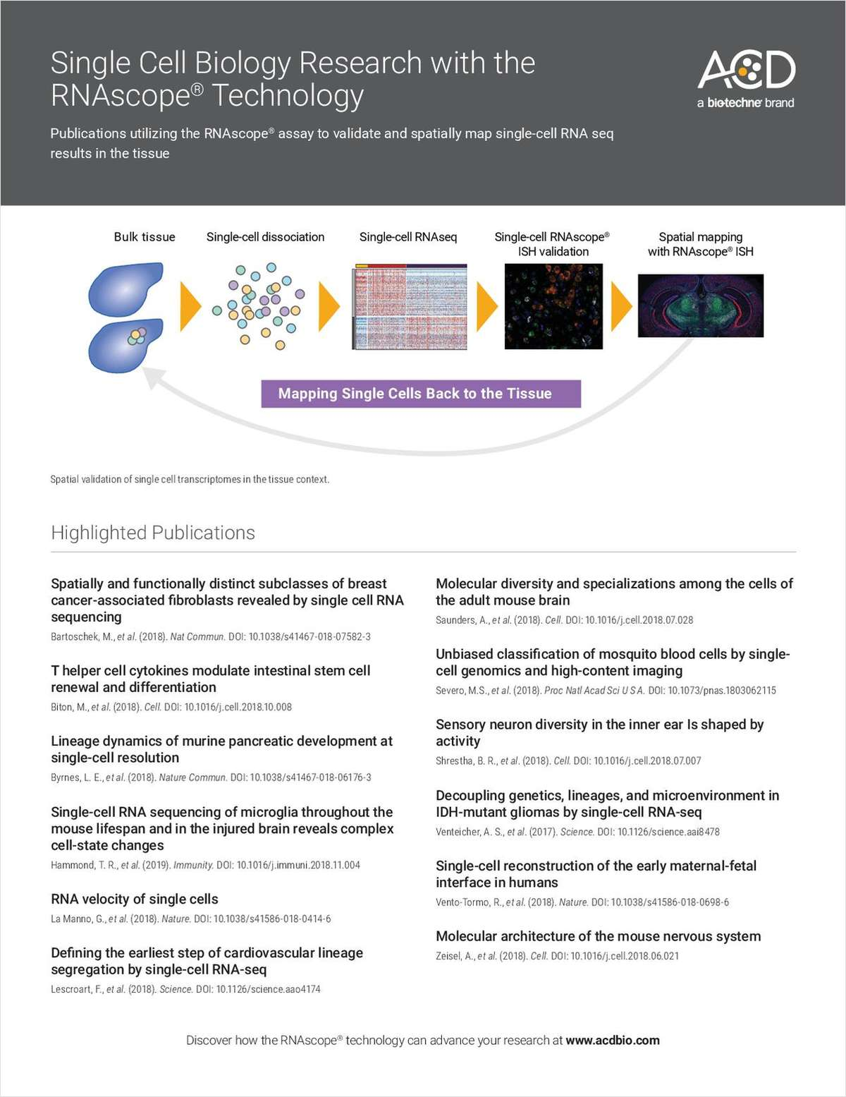 Publications Utilizing the RNAscope Assay to Validate and Spatially Map Single-cell RNA-Seq Results in the Tissue