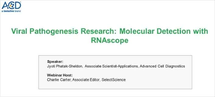 Viral Pathogenesis Research: Molecular Detection with RNAscope