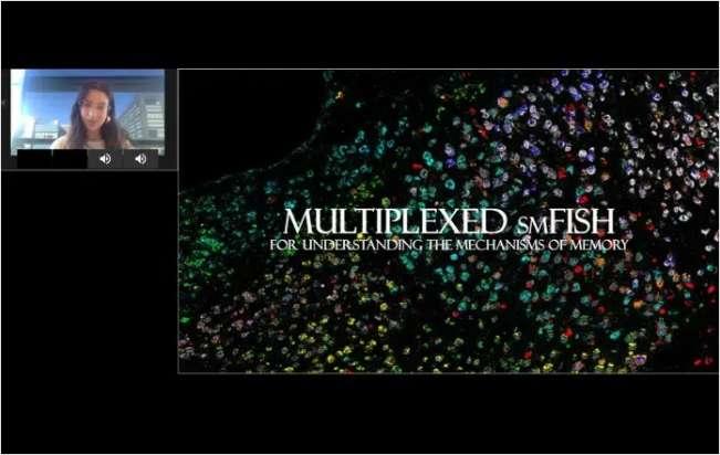 Using Spatial Transcriptomics to Understand the Molecular Mechanisms of Memory