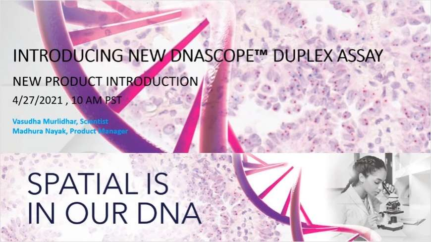 Introducing a Novel Chromogenic ISH Assay for High-Resolution Detection of DNA Copy Number and Structural Variants