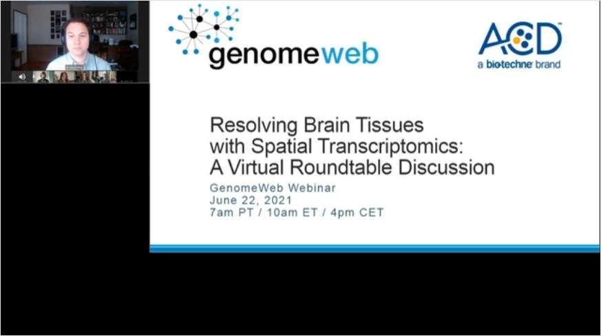 Resolving Brain Tissues with Spatial Transcriptomics: A Virtual Roundtable Discussion