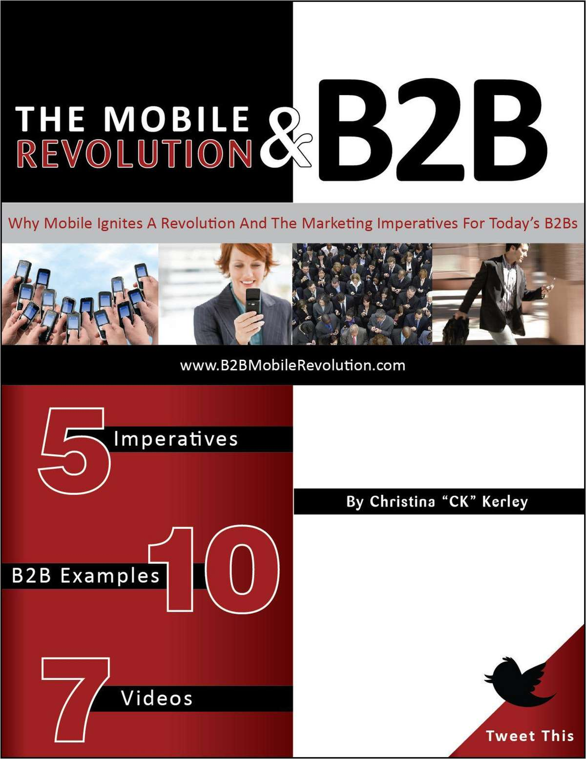 The Mobile Revolution & B2B