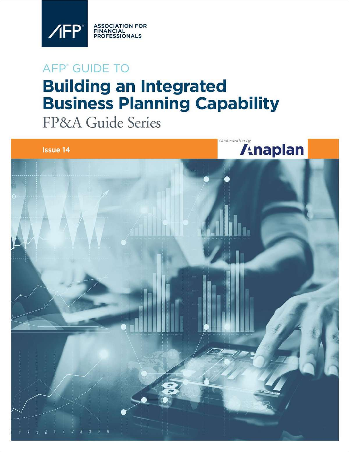 Building an Integrated Business Planning Capability