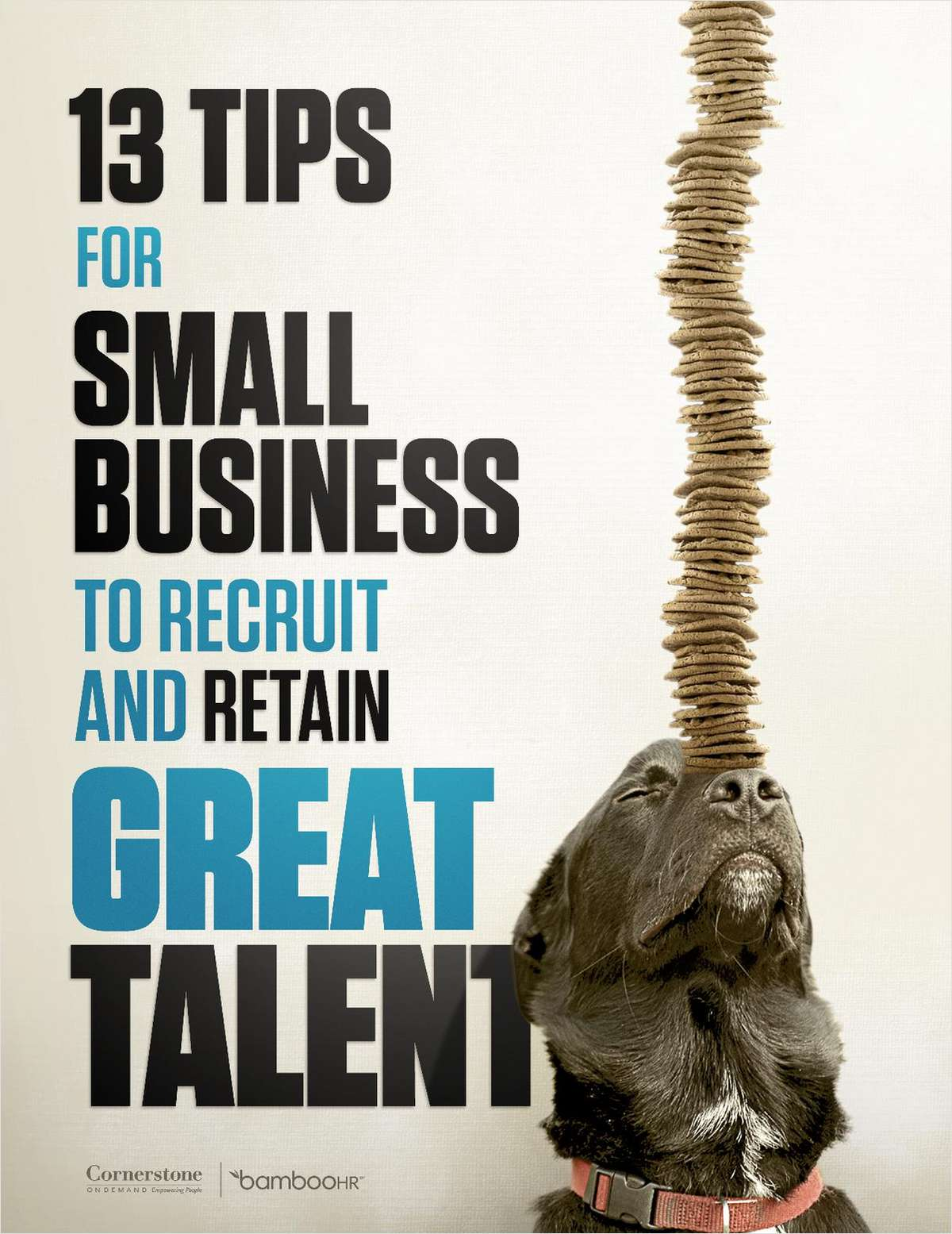 13 Tips for Small Business to Recruit and Retain Great Talent