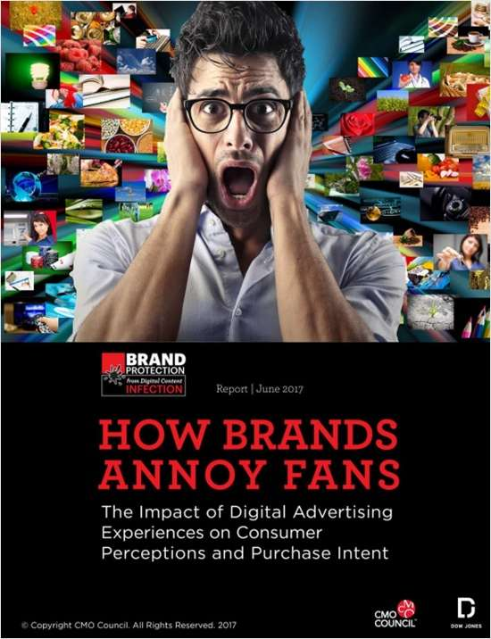 How Brands Annoy Fans - The Impact of Digital Advertising Experiences on Consumer Perceptions and Purchase Intent