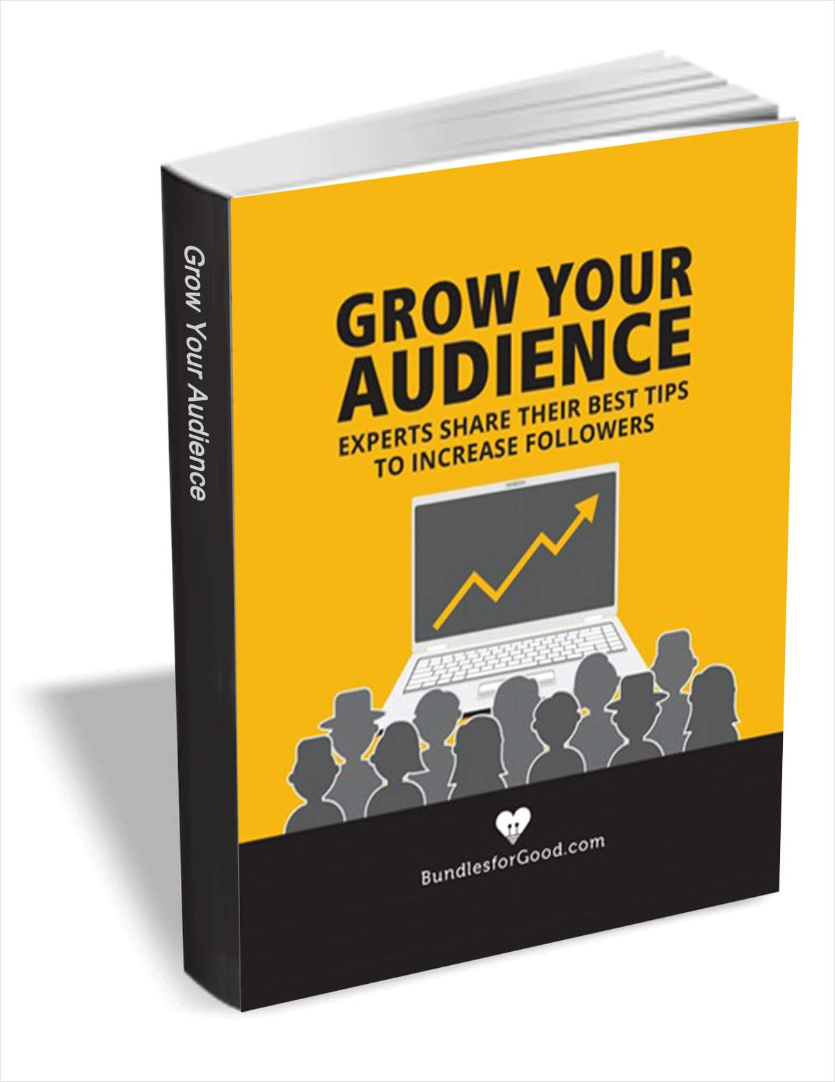 Grow Your Audience - Experts Share Their Best Tips to Increase Followers
