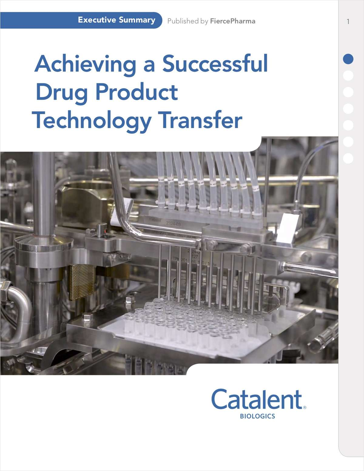 Achieving a Successful Drug Product Technology Transfer