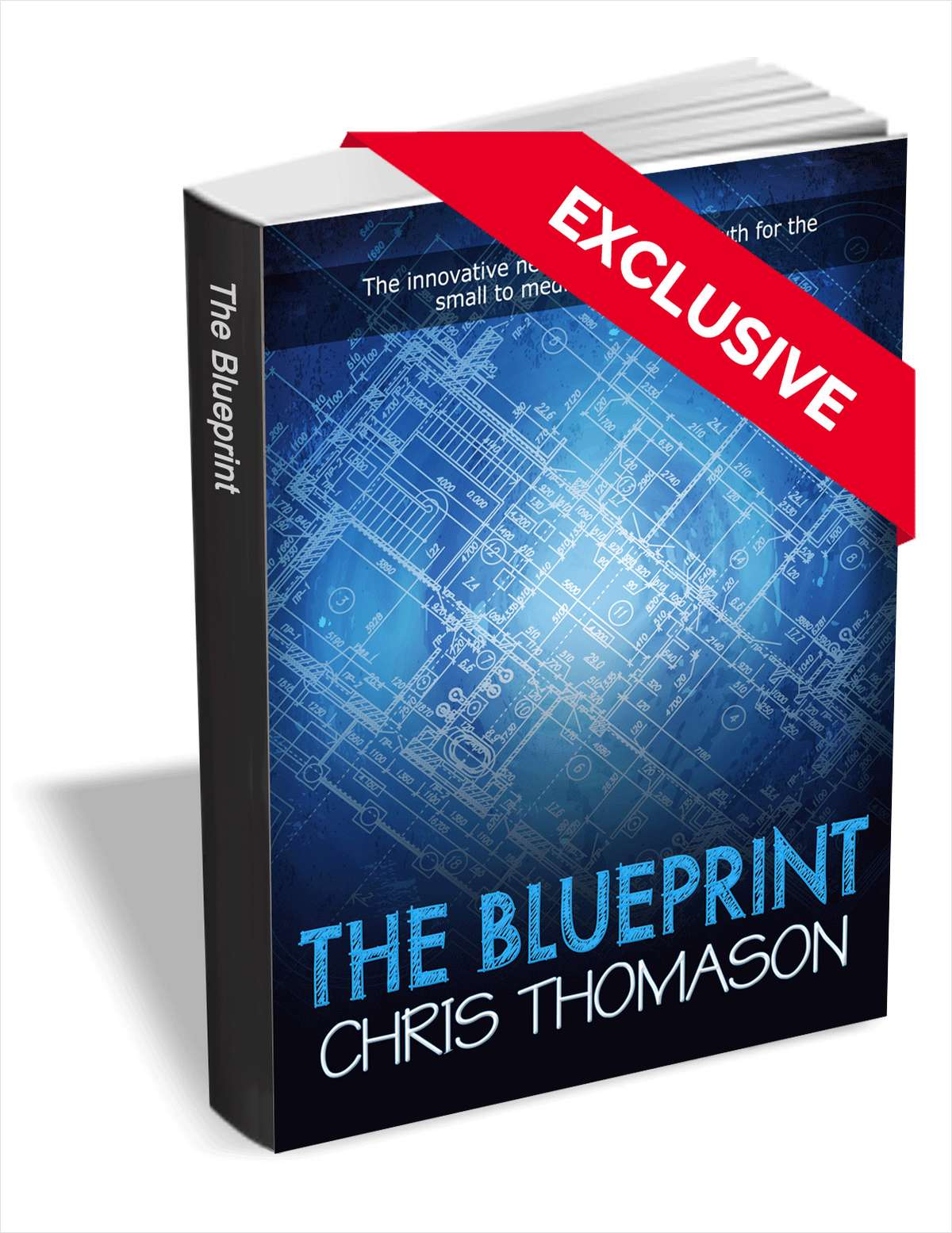The Blueprint: The Innovative New Approach to Growth for the Small to Medium-sized Business ($9.99 Value) FREE For a Limited Time