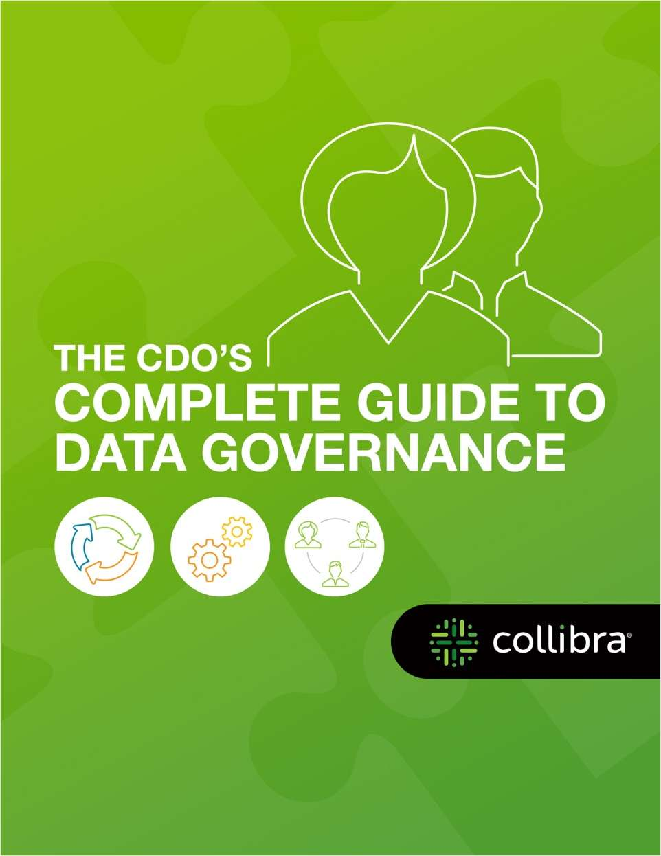 The CDO's Complete Guide to Data Governance