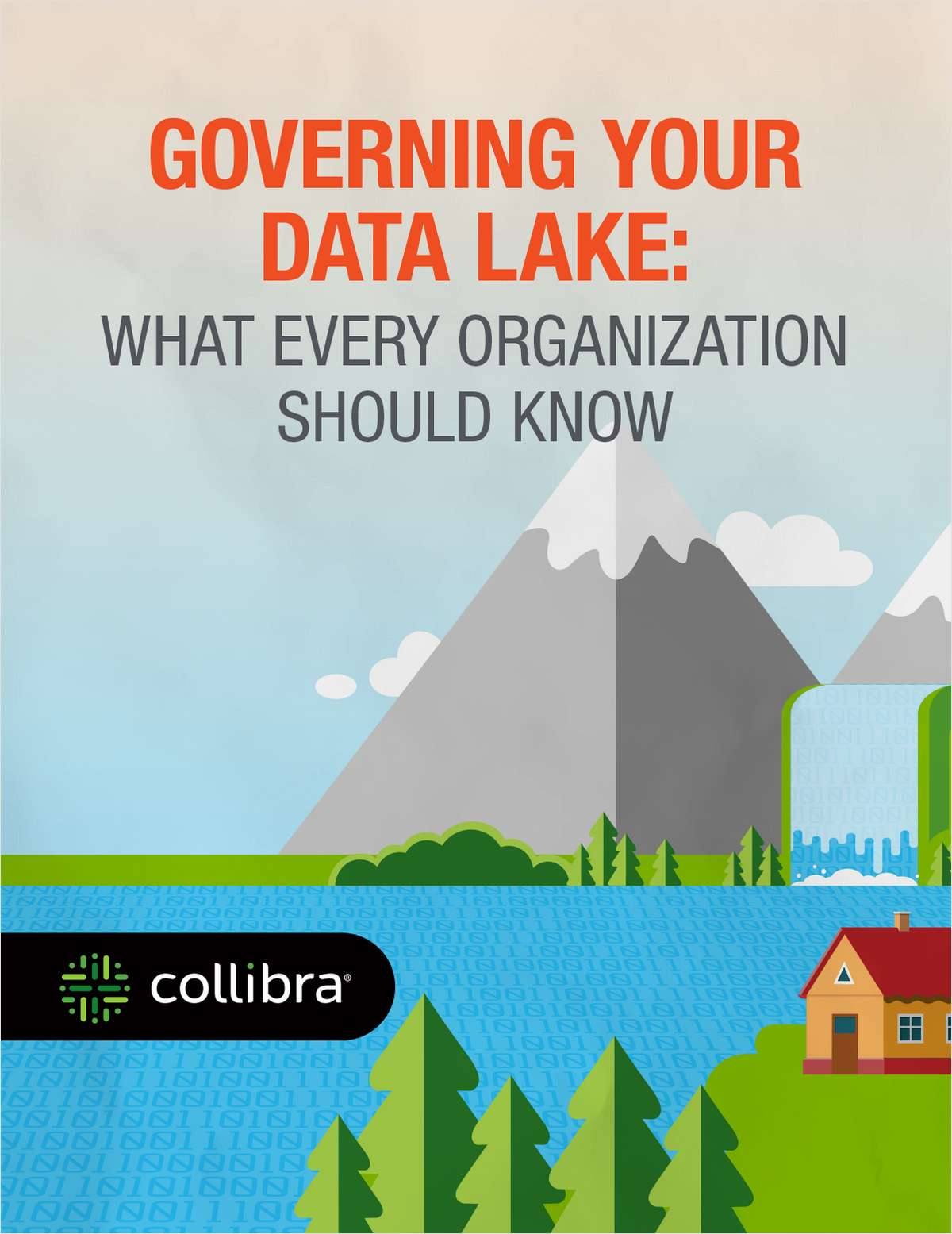 Governing Your Data Lake: What Every Organization Should Know