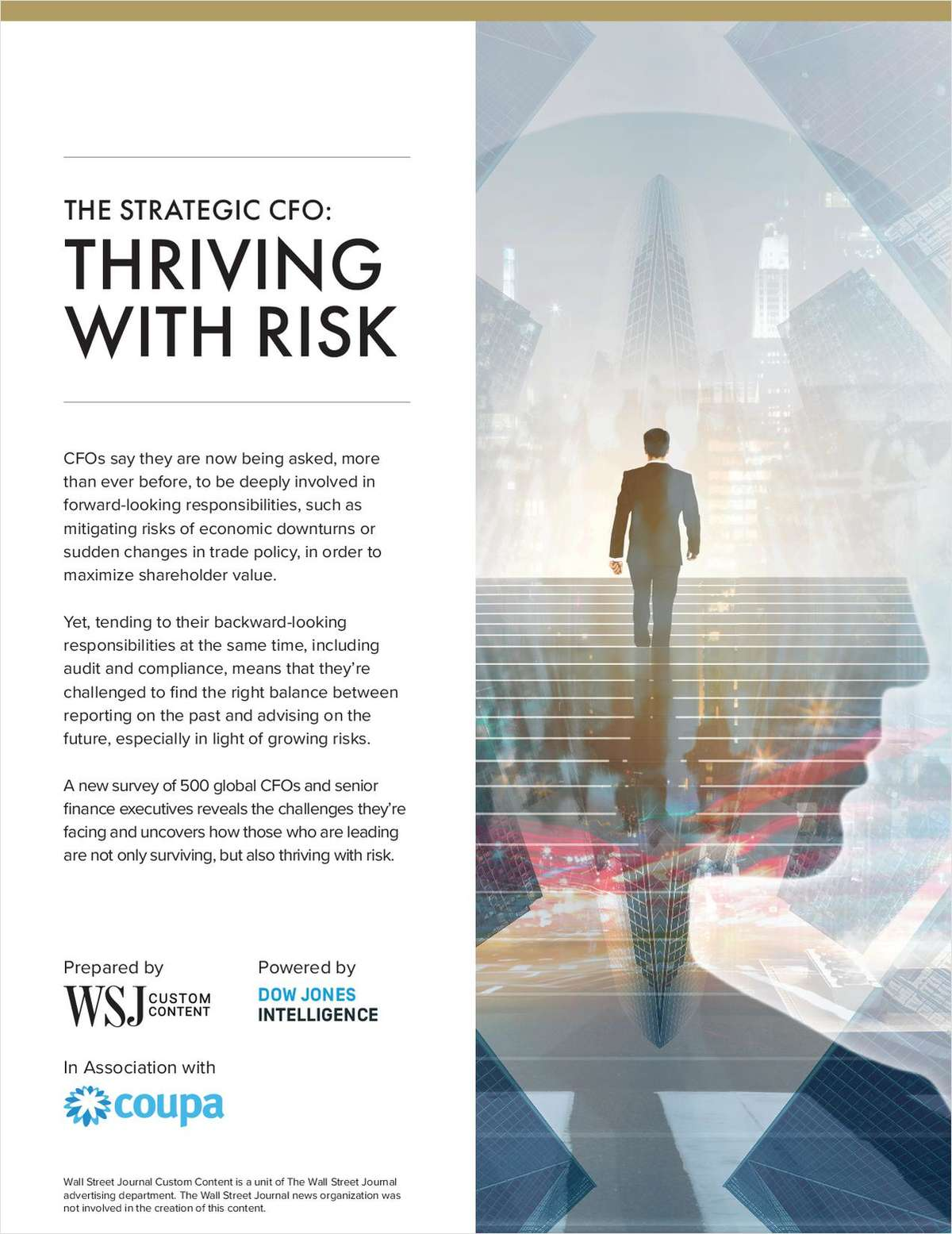 The Strategic CFO: Thriving With Risk