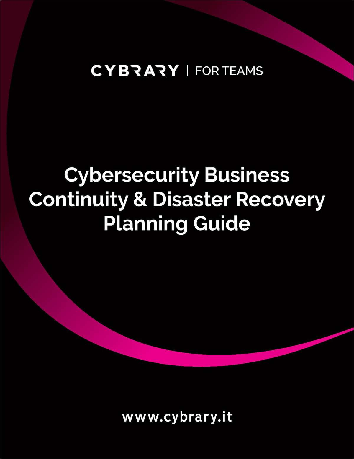 Cybersecurity Business Continuity & Disaster Recovery Planning Guide