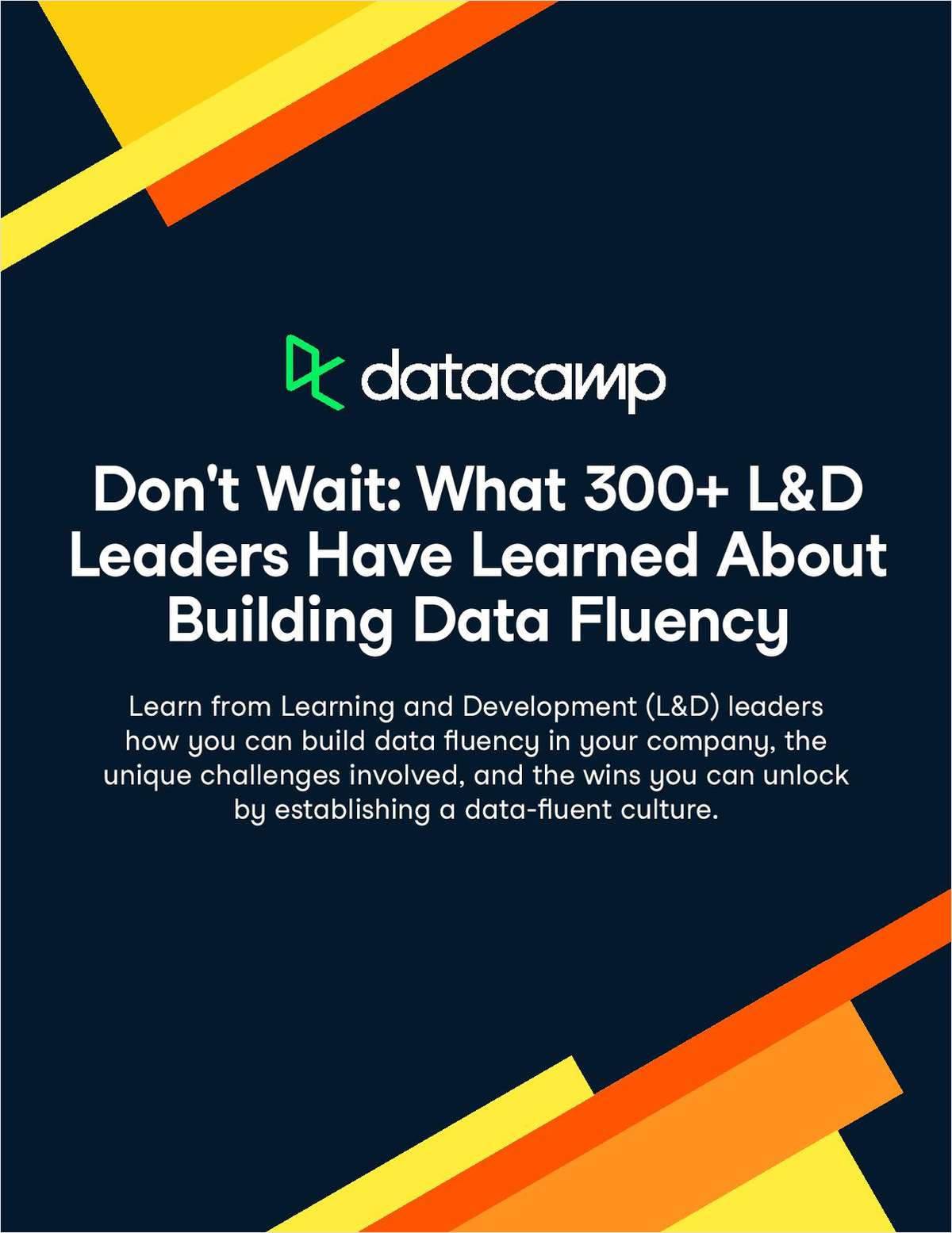 Whitepaper | What 300 L&D Leaders Have Learned About Building Data Fluency