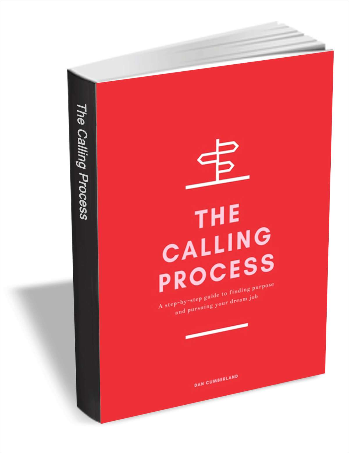 The Calling Process - A Step-by-Step Guide to Finding Purpose and Pursuing Your Dream Job