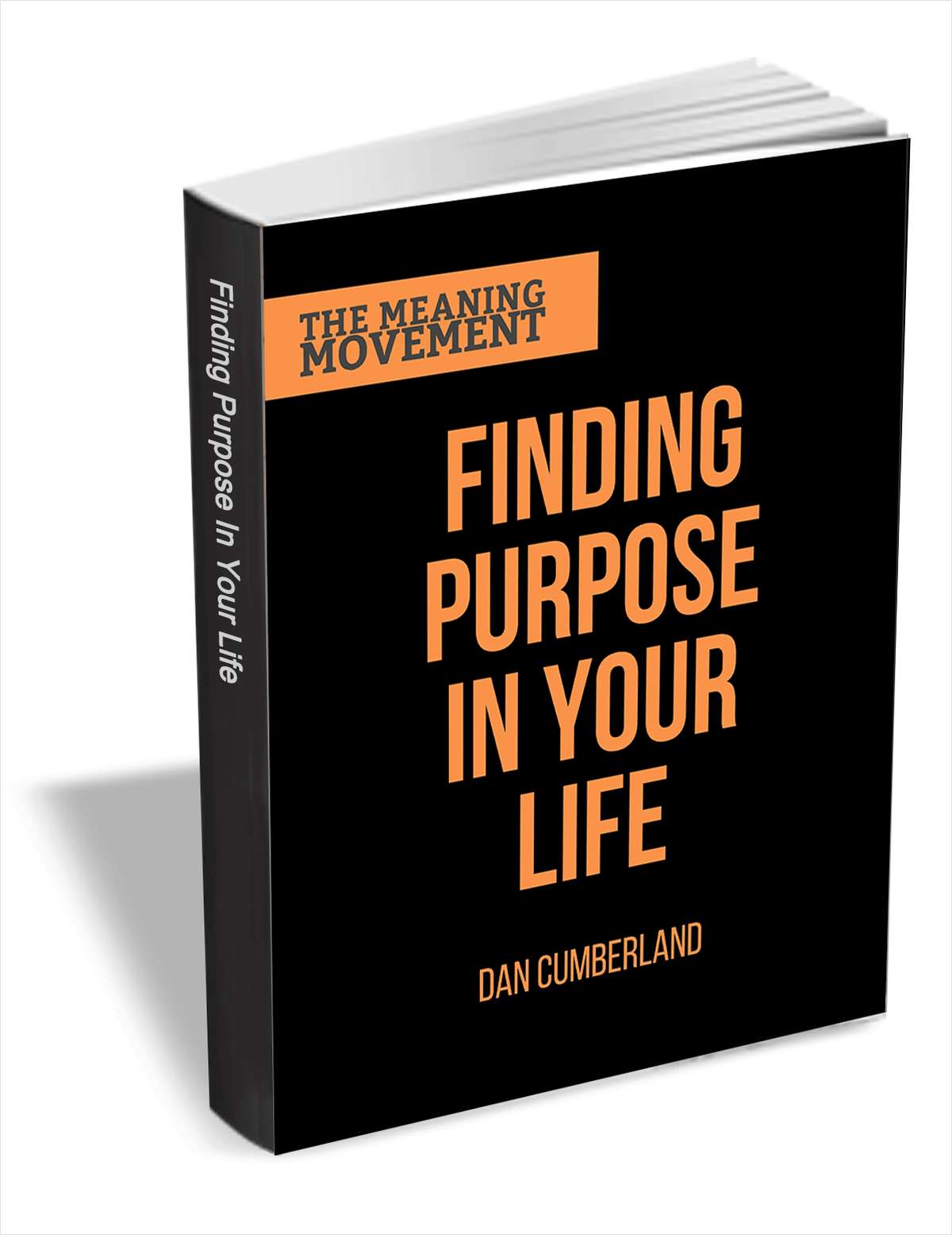 Finding Purpose in Your Life - The Guide to Finding Your Life's Work