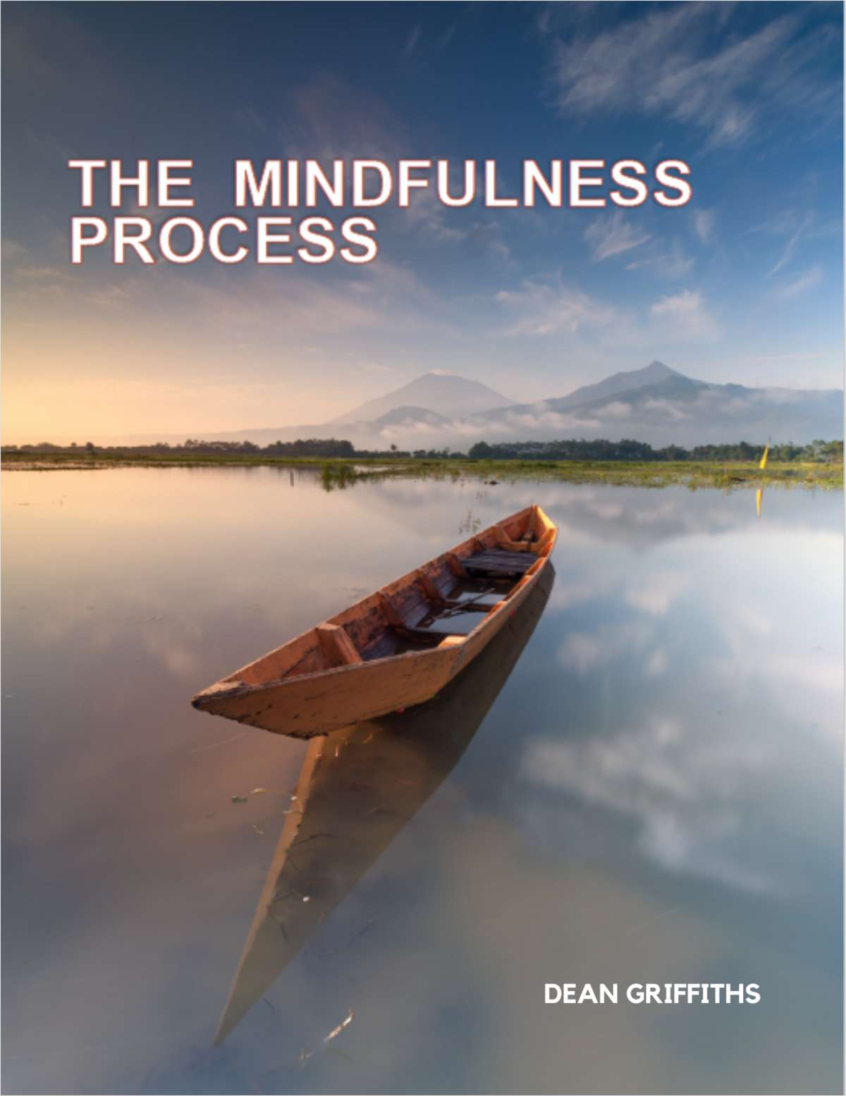 The Mindfulness Process