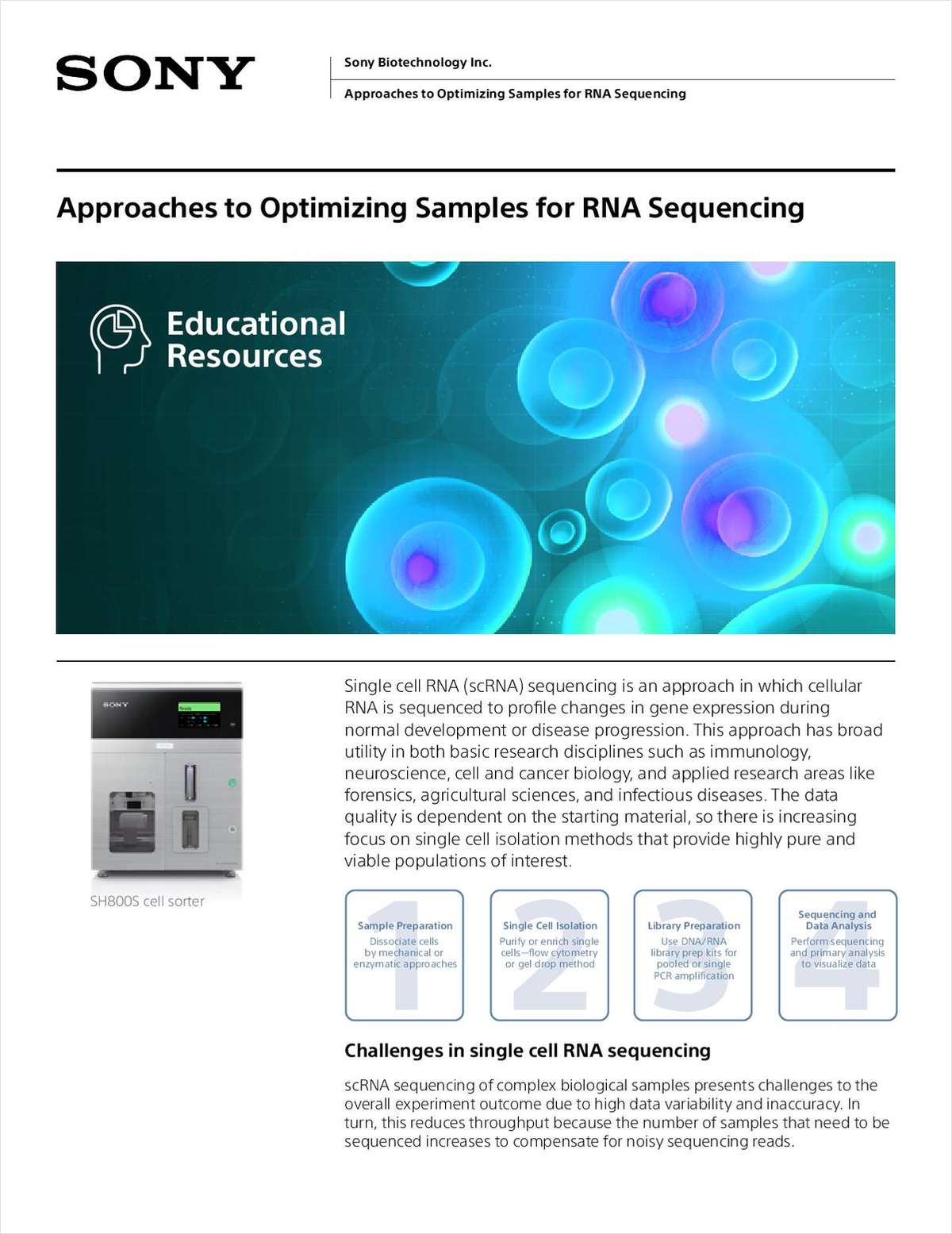 Approaches to Optimizing Samples for RNA Sequencing